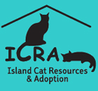 Island Cat Resources and Adoption