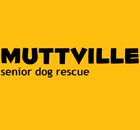 Muttville